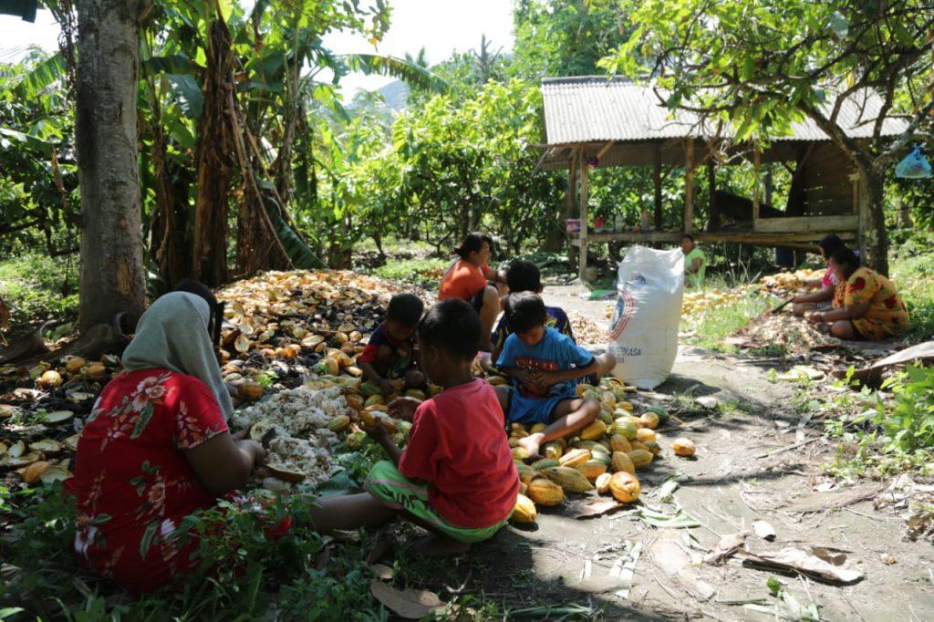 IMG-20190106-WA0105-1024x682 Tiba Di Pulau Sebesi, Warga Langsung Bersih-Bersih & Kembali Beraktivitas